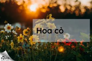 Nhóm hương hoa cỏ