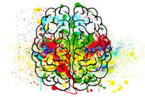 Những Giai Đoạn Phát Triển Não Bộ Của Trẻ